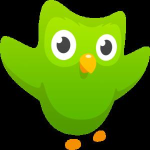 Duolingo-android-apk-app