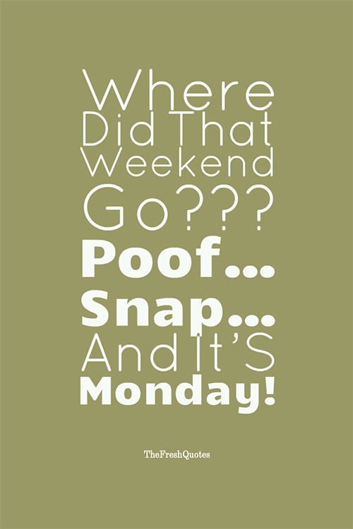 Lovely ... Saturday Quote Where Did That Weekend Go Poof Snap And  ...