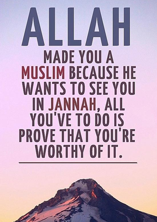 100 Inspirational Islamic Quotes With Beautiful Images