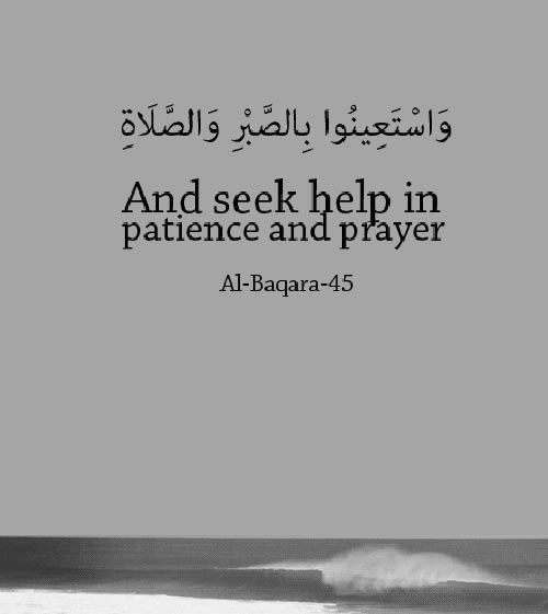 Downloading Arabic Quotes: 100+ Inspirational Quran Quotes With Beautiful Images