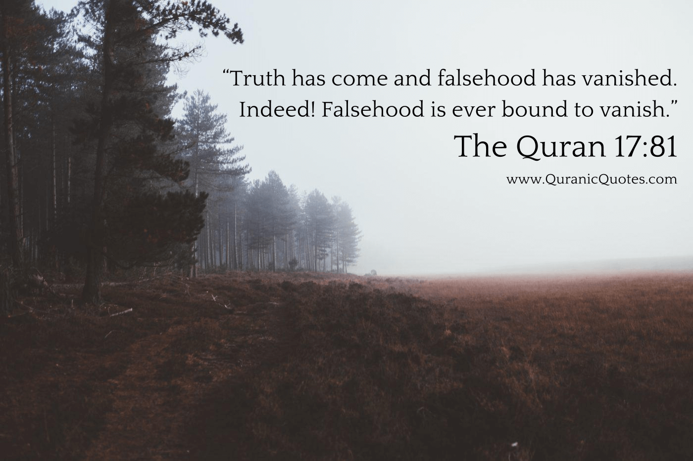 100 Inspirational Quran Quotes With Beautiful Images