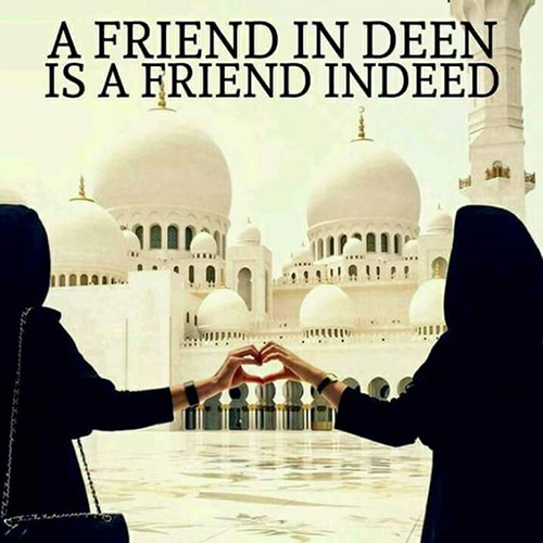 25+ Islamic Friendship Quotes For Your Best Friends |